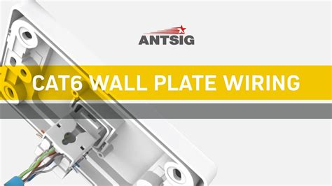 Antsig How Wire Cat Wall Plate Youtube