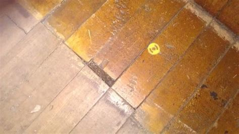 Wood Floor Restoring   DoItYourself.com Community Forums