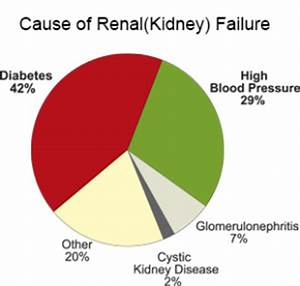 what causes kidney failure - DriverLayer Search Engine