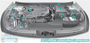 2015 Hyundai Sonata Engine Compartment Diagram  2 0 T