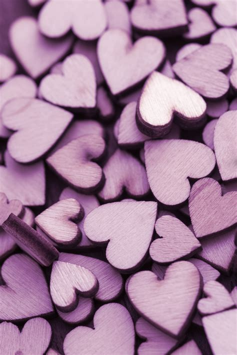 Free Stock Photo 13504 Pile Of Purple Hearts Freeimageslive