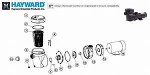 Hayward Matrix Pump Parts