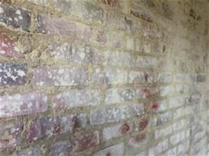 Putz Bröckelt Von Der Wand Was Tun : backsteinwand von putzresten befreien s ubern ~ Indierocktalk.com Haus und Dekorationen