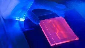 gel documentation gel doc fluorescence With best gel documentation system