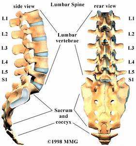 Low Back Pain Specialist | Singapore Sports & Orthopaedic ...