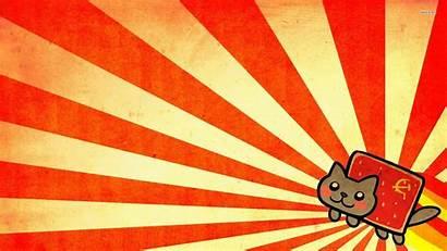 Cat Meme Wallpaperaccess Backgrounds Excelent Nyan Wallpapers