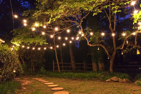 patio lights in trees minimalist pixelmari - Hanging Lights From Trees