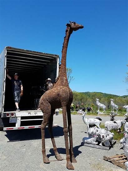 Sheet Yard Metal Giraffe Garden Statue Tall