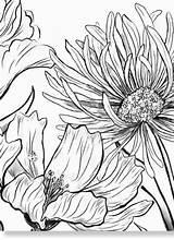Enchanted Brighton Coloring sketch template