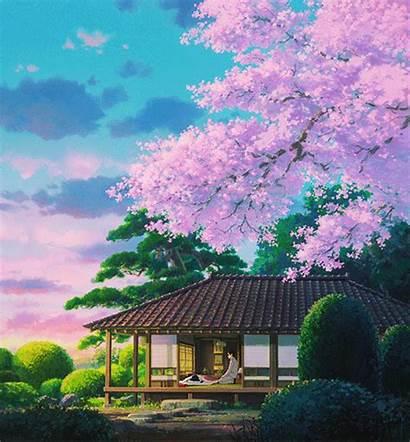 Ghibli Studio Wind Rises Miyazaki Cherry Blossom
