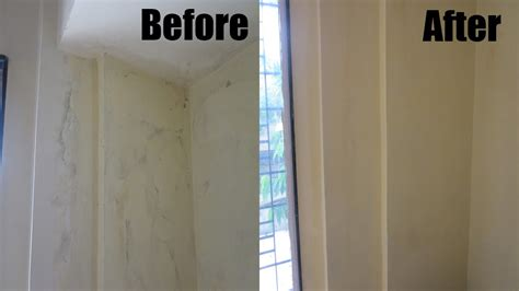 clean black mold youtube