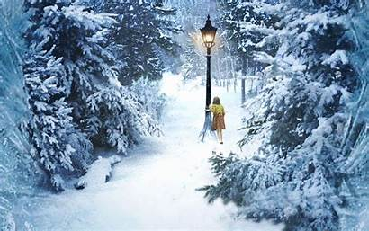 Narnia Chronicles Wallpapers Lucy Wallpapersafari Winter Forest