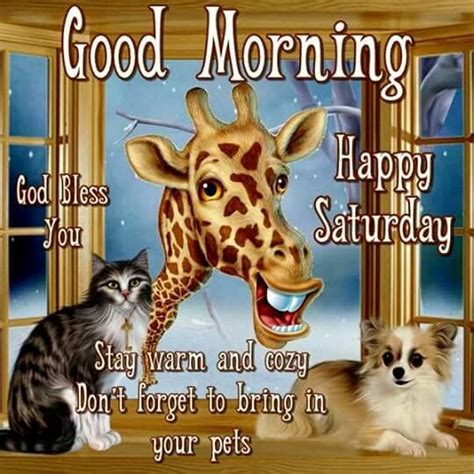 cute animals good morning saturday quote pictures