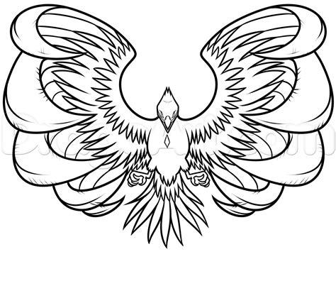 drawing  phoenix step  step step  step phoenix