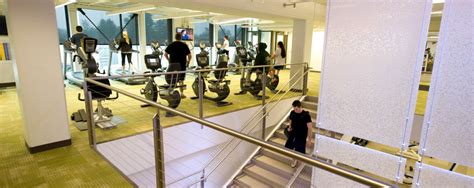 ely fitness center westfield state