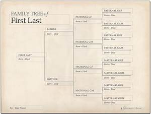 25 best ideas about tree templates on pinterest for Interactive family tree template