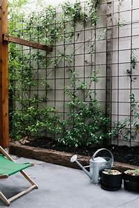 Plantes Grimpantes Mur : comment cacher un vilain mur exterieur outdoor amnagez un ~ Melissatoandfro.com Idées de Décoration