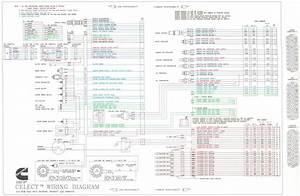 Diesel Y Combustion  Diagrama De Motor Cummins N