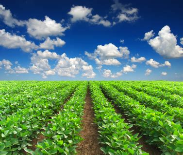 farm  ranch purchase agreement  tuesday journal