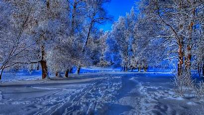 Winter Nature Wallpapers Backgrounds