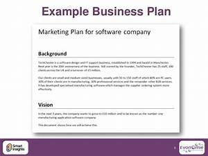 example of a business plan for a software company With princess trust business plan template