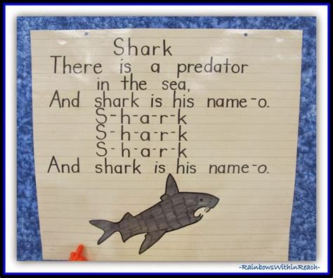 preschool shark song creatures in children s freebie mp3 sharks 651