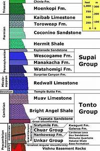 A Geologic Cross Section Of The Grand Canyon Reveals A