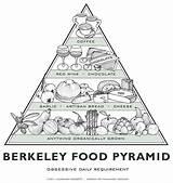 Edu Gourmet Americanhistory Pyramid Berkeley 2002 Counterculture Meets sketch template