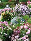 Cottage gardens to love | Landscaping Ideas and Hardscape rose garden