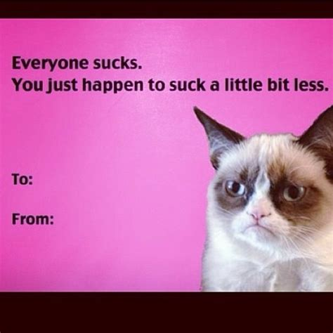 Grumpy Cat Meme Valentines Day - 6530 best images about grumpy cat i love this cat on pinterest gift quotes memes humor and
