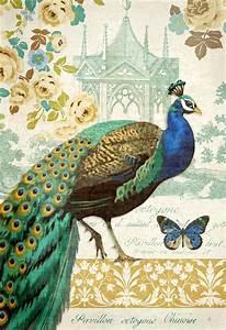 513 best Illustration * Peacocks images on Pinterest ...
