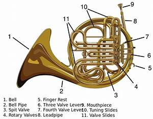 File Carynprice-french Horn Svg