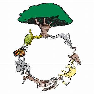 The Circle Of Life  Simplified To 8 Animals And A Tree