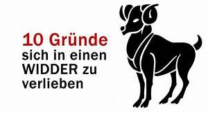 Widder Und Widder : 10 gr nde sich in einen widder zu verlieben ~ Orissabook.com Haus und Dekorationen