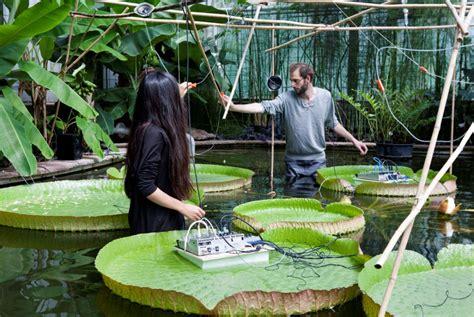Botanischer Garten Des Kit öffnungszeiten kit botanischer garten startseite
