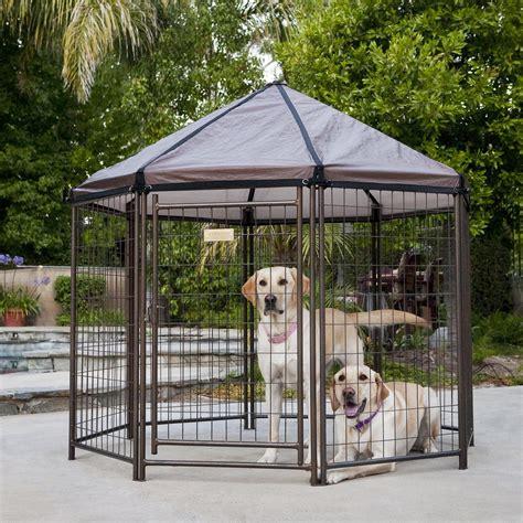 outdoor kennel advantek pet gazebo modular outdoor kennel petco