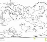 Pond Coloring Pages Spring Getcolorings Printable sketch template