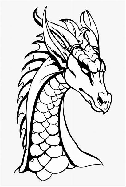 Dragon Head Drawing Neck Dragons Coloring Tribal