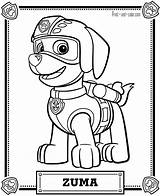Paw Patrol Coloring Pages Printable Sheet sketch template