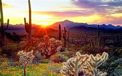 Arizona Wallpapers Screensavers