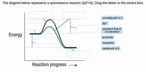 Solved  The Diagram Below Represents A Spontaneous Reactio