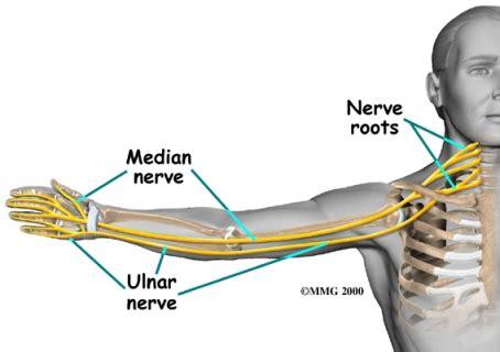 Test Nerve Conduction Causes Symptoms Treatment