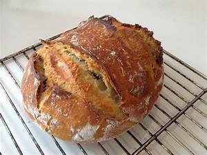 Four A Pain Maison : reussir son pain au levain levure levain 100 naturel ~ Premium-room.com Idées de Décoration
