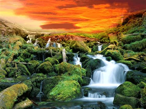 Animated Nature Wallpaper Gif - free pop wallpaper animated wallpaper gif