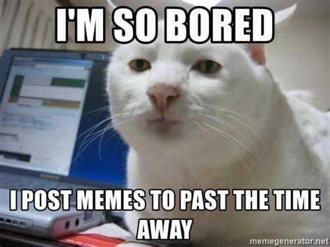 Bored Memes - i m so bored i post memes to past the time away serious cat meme generator
