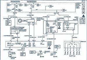 1998 Gmc Safari Wiring Diagram Wiring Diagram Mug Network B Mug Network B Piuconzero It