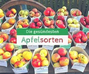 Großen Apfelbaum Kaufen : die besten 25 apfelsorten ideen auf pinterest rezept ~ Lizthompson.info Haus und Dekorationen