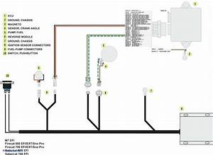Doorbell Wiring Diagram Two Chimes  U2014 Untpikapps