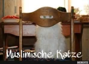 muslimische sprüche muslimische katze lustige bilder sprüche witze echt lustig schilder sprüche
