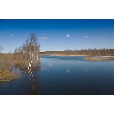 95 best images about Estonian Landscapes on Pinterest